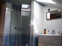Apartmán 1B - koupelna - pronájem Podivín
