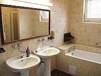 Koupelna - apartmán k pronájmu Vracov