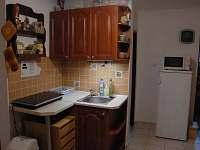 Malá kuchyňka s indukčním vařičem, lednicí a mikrovlnnou troubou