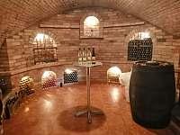 Vinný sklep u Malíků - chalupa k pronajmutí - 8 Drnholec