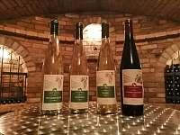 Vinný sklep u Malíků - chalupa ubytování Drnholec - 9