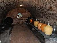 Vinný sklípek - chata ubytování Perná