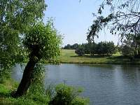 rybník MRS 1,6 ha - chata k pronájmu Ruprechtov