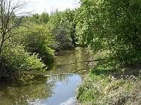 Lužní lesy - pronájem chalupy Týnec u Břeclavi