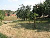Čejkovice - chalupa k pronájmu - 2