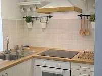 Kuchyňka - rustikální apartmán