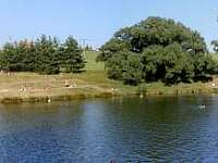 Rybník - srub k pronajmutí Ruprechtov