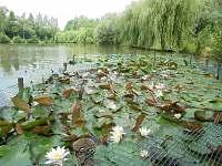 Rybník - Prusinovice