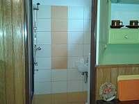 Pohled do koupelky. - apartmán ubytování Vracov