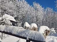 zahrádka v zimě - Vápenice - Mikulčin Vrch