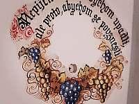 Vinný sklep u Klárky,Nechory - chata k pronájmu Prušánky - Nechory