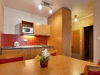 Apartmán Family&Business - kuchyňka - k pronajmutí Kyjov