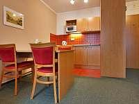 Apartmán Family&Business - kuchyňka - k pronájmu Kyjov