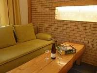 Penzion Vinařství Burian Bavory - Obývací pokoj_III -