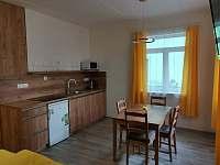 Dům 47- žlutý apartmán - Lukov