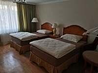 Apartmány Hluk - Ložnice se 2-mi jednolůžky v přízemního apartmánu - ubytování Hluk