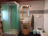 Koupelna v přízemí - srub k pronájmu Nemotice