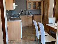 Kuchyñ - pronájem apartmánu Uherské Hradiště
