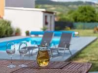 Ubytovani Palava - bazen a vino