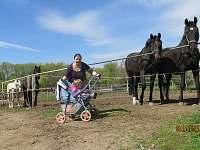 Okolí je vhodné pro vyjížďky na koni