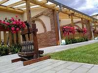Ubytování Lipový květ - apartmán k pronajmutí - 20 Dolní Dunajovice