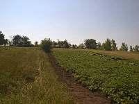 Terezín u Čejče - chalupa k pronájmu - 27