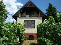 Jižní Morava: Chata k pronájmu