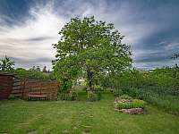 Srdce zahrady - úrodný strom ořech - vila k pronájmu Blatnička