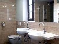 koupelna - pronájem chalupy Jestřebice