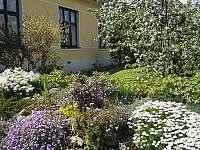 pohled od vchodu s rozkvetlou zahradou - Doksy u Máchova jezera