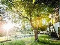zahrada - chalupa k pronajmutí Jestřebí - Újezd