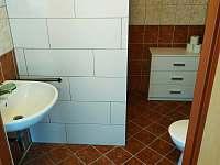 koupelna se sociálním zařízením - chata k pronájmu Staré Splavy