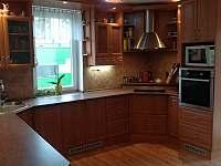 plně vybavená kuchyň - rekreační dům ubytování Doksy