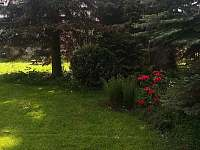 zahrada - pronájem rekreačního domu Doksy