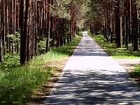 desítky km cyklostezek - Pertoltice pod Ralskem