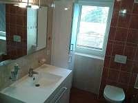 koupelna v přízemí - rekreační dům ubytování Doksy