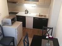 apartmán kuchyň - rekreační dům k pronajmutí Rokytnice nad Jizerou