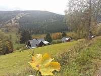 Chalupa Na hráni, součástí je i rozkvetlá horská louka - k pronájmu Velká Úpa