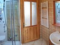 Roubenka čp 135: koupelna v podkroví s parním saunou, infrasauna je v přízemí - Jílové u Držkova
