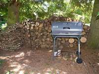 gril a dřevo