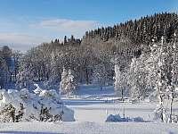 Okolní příroda - zima - Svoboda nad Úpou