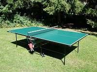 stolní tenis - Svoboda nad Úpou