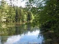 Cesta k lesu okolo rybníku