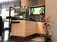 Luxury apartment - apartmán k pronájmu - 15 Harrachov