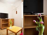 Harachov - apartmán k pronájmu - 7