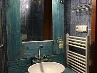 Koupelna se sprchovým koutem - Svoboda nad Úpou