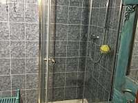 Koupelna se sprchovým koutem - pronájem apartmánu Svoboda nad Úpou