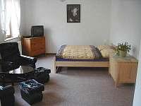 Vrchlabí - apartmán k pronájmu - 4