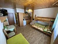 Apartmán č.8 - pronájem Herlíkovice