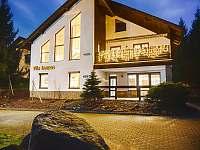 Vila na horách - zimní dovolená Harrachov